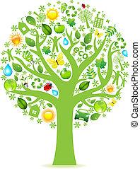eco, strom