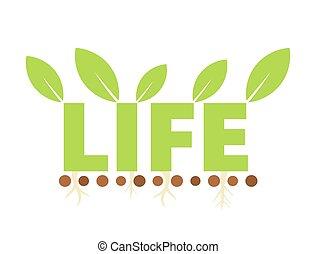 eco, symbole vie
