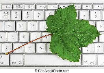 eco, toetsenbord