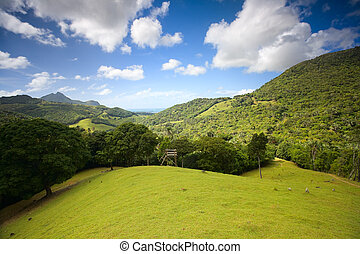 Eco-tourism. Beautiful hills landscape with hiking path