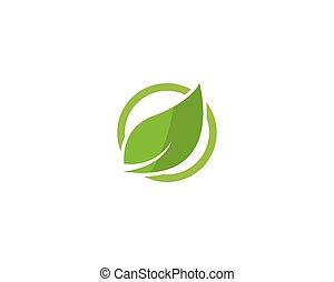 Eco Tree Leaf Logo