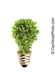 Eco tree lightbulb - Tree in lightbulb socket symbolizing...
