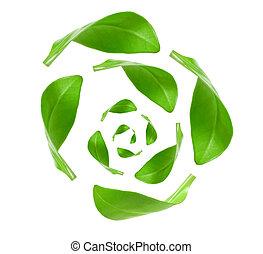 eco, vrijstaand, groene, recycling, energie, witte