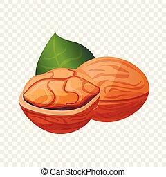 Eco walnut icon, cartoon style