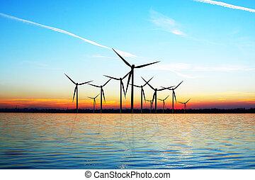 eco, windkraft
