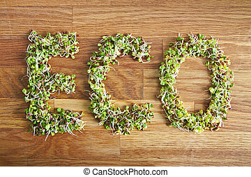 Eco word made of organic sprouts