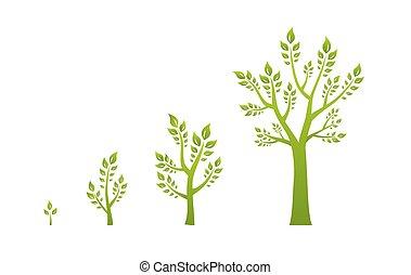 eco, zöld, fogalom, fa, növekedés