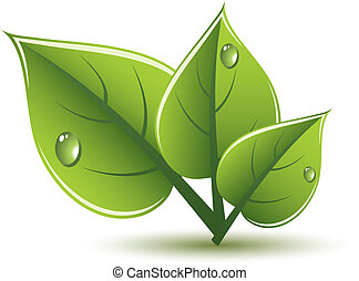eco, zielone listowie, wektor, projektować
