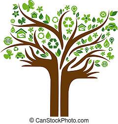 ecológico, ícones, árvore, com, duas mãos