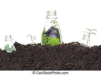 ecológico, botellas plásticas