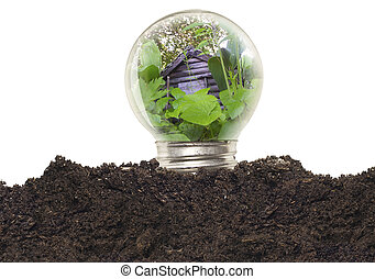 ecológico, concepto, -, bombilla