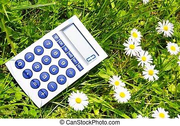 ecológico, contabilidad