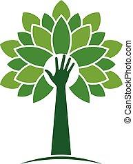 ecológico, mano, árbol, con, hojas, logo., vector, diseño...