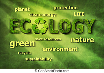 ecológico, palabras