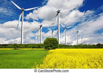 ecológico, viento