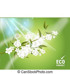 ecología, concepto
