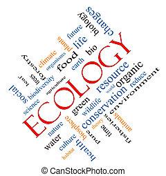 ecología, palabra, nube, concepto, angular