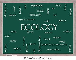 ecología, palabra, nube, concepto, en, un, pizarra