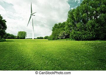 ecología, potencia