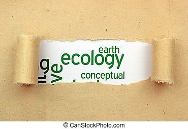 ecología, tierra