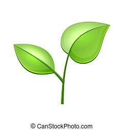 ecologia, conceito, ícone, com, lustroso, verde sai, vetorial