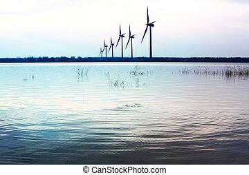 ecologia, vento
