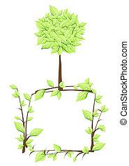 ecologia, verde