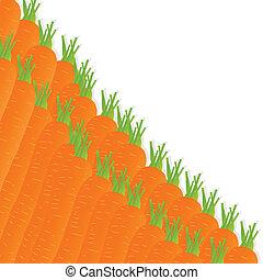 ecologia, vettore, carota, fondo