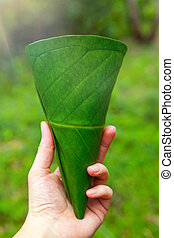 Ecologic cup made from leaves. Eco-friendly take away...