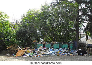 Ecological accident in Russia. Garbage tanks. - Garbage...
