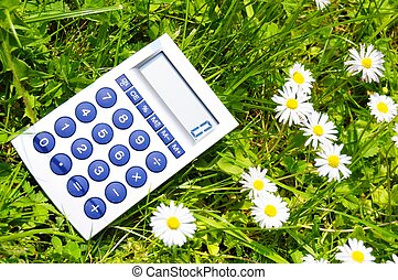 ecological accounting