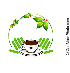 ecological coffee plant