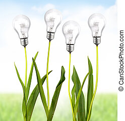 Ecological energy - Green plant with bulb light
