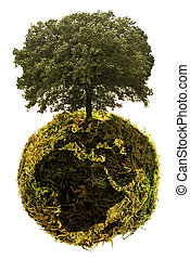 ecological planet and alternative energies