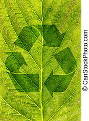 ecological recycling concept