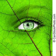 ecologie, conceptueel beeld, met, groene, menselijk oog
