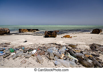 ecologie, en, de, zee