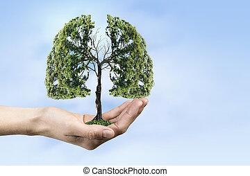 ecologie, en, gezondheid, concept
