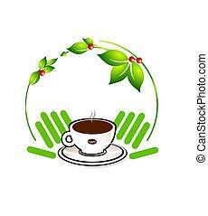 ecologisch, koffie, plant