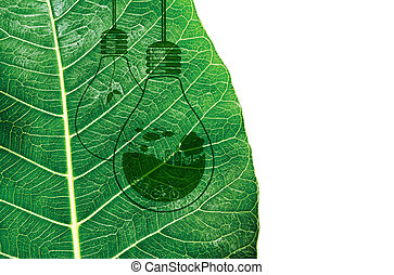 Ecology and think green concept design on fresh green leaf texture background