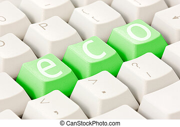 Computer keyboard with an eco option