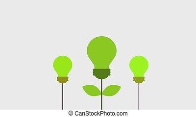 ecology energy environment
