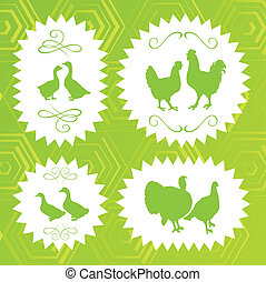 Ecology farm chicken, goose, duck and turkey label vector -...