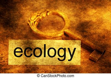 Ecology tag and old key