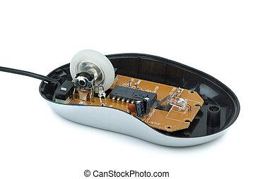 economico, dentro, mouse ottico