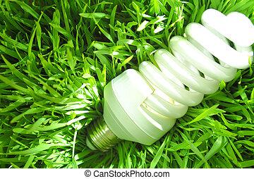 Economy light bulb on green grass