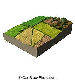 ecossistema, modelo, terra cultivada, 3d