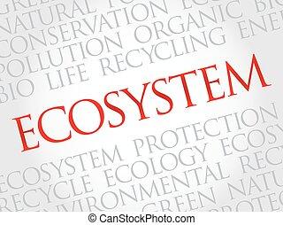 ecosysteem, woord, wolk