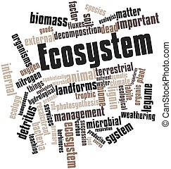 Ecosystem - Abstract word cloud for Ecosystem with related...