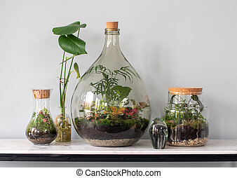 ecosystem terraria